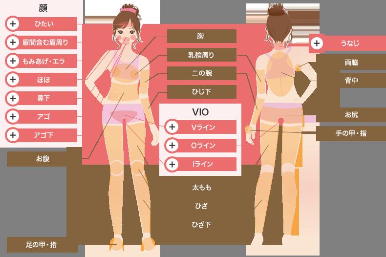 クレアクリニックの施術範囲および料金表